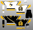 brand new a4b91 f2126 Pittsburgh Penguins